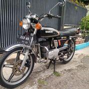 Suzuki GP100 1981 Motor Antik Klasik Koleksi Istimewa Bkn Twin Gp125 Gt100 Gt185 Ts125 Rx King Cb100 (29629571) di Kab. Cirebon