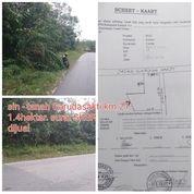 Tanah Pinggir Jalan Tanah Keras Bagus (29629994) di Kab. Kampar