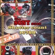 Sony SLT-A77 Mulus Like New (29645226) di Kab. Sleman