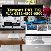 Tempat Magang Tkj Di Palembang (29676546) di Kab. Kotabaru