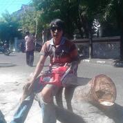 Potong Pohon Palem Surabaya Dan Sidoarjo (29699383) di Kota Surabaya