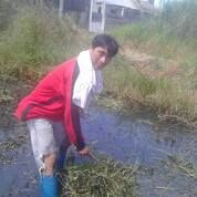 Tukang Potong Rumput Semak Belukar Ilalang Tanah Kosong / Rumah Kosong (29699565) di Kota Surabaya
