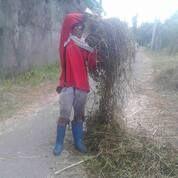 Potong Rumput Ilalang Semak Belukar Bersih Bersih Rumput (29699735) di Kota Surabaya