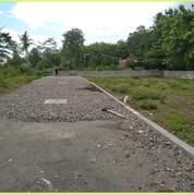 Angsur 6 X Candi Village Luas Ideal Barat Jl Kaliurang (29701198) di Kab. Sleman