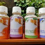 Raw Honey Madu Hutan Kaya Akan Suplemen Untuk Tubuh Kita (29730724) di Kota Depok