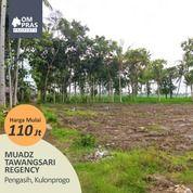 Investasi Kavling Dekat Bandara Baru Tidak Rugi! (29742712) di Kab. Kulon Progo
