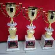 Piala Set Cup Crystal (29745776) di Kota Bandung