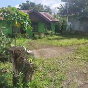 Rumah & Gedung Walet Pagar Alam Sumatera Selatan Luas 1000 M2 Rp 1,5 Milyar (29766842) di Kota Pagar Alam
