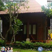 Villa Di Senggigi Lombok Barat Dengan Lahan Luas V032 (29783427) di Kab. Lombok Barat