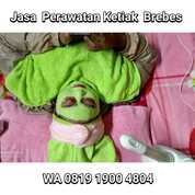 WA 0819 1900 4804 Jasa Perawatan Ketiak Brebes (29795454) di Kota Tegal