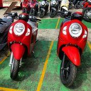 Honda Scoopy 110 Cc ( Promo Credit ) (29800044) di Kota Jakarta Selatan