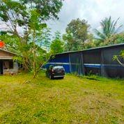 Tanah Dan Kandang Ayam Ungaran Timur Lokasi Dekat Exit Toll (29817020) di Kab. Semarang