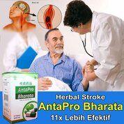 OBAT STROKE HERBAL - ANTAPRO BHARATA - 100% ASLI (29835113) di Kota Bengkulu