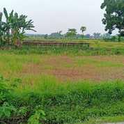 TERMURAH Tanah Industri Nganjuk NOL JALAN Gondang Lengkong SANGAT STRATEGIS (29837501) di Kab. Nganjuk