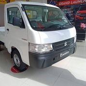 Suzuki New Carry Pickup DP 10jt (29887017) di Kab. Indramayu