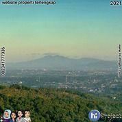 Tanah Bukit Lombok Barat 3,000 M2 Di The Hill Senggigi Batu Layar T521 (29942680) di Kab. Lombok Barat