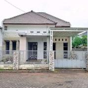 Rumah Modern Selangkah Dari Stadion Kanjuruhan Puri Edelweis (29945091) di Kab. Malang