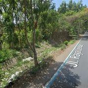 Tanah Di Pinggir Jalan Raya Lembar-Lombok Barat (29946141) di Kab. Lombok Barat