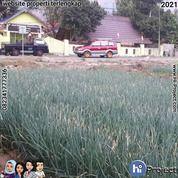 Tanah Pinggir Jalan Di Lombok Timur Sembalun Lokasi : Sembalun Aikmel Lombok Timur T524 (29980672) di Kab. Lombok Timur