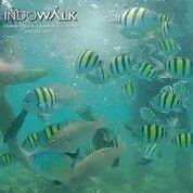 Tiket Wisata Pulau Tidung Indowalk (29990578) di Kab. Kep. Seribu