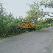 Tanah Di Dewi Sri Legian Kuta Bali (30018421) di Kab. Badung