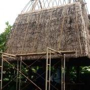 Atap Alang -Alang (30020138) di Kab. Karangasem