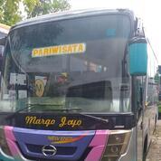 Bus Medium Pariwisata Dengan Exterior Menarik Dan Murah (30047528) di Kab. Bojonegoro