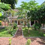Guesthouse Di Batu Layar (30059746) di Kab. Lombok Barat