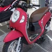 Honda Scoopy 110cc [ Promo Credit ] (30080012) di Kota Jakarta Selatan