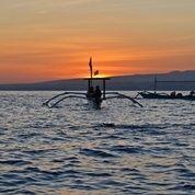 Tiket Dolphin Lovina Gratis Kunjungan Ke Taman Laut (30107260) di Kab. Buleleng