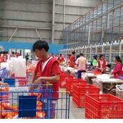 LOWONGAN KERJA PACKING BARANG TERBARU 2021 (30155706) di Kota Jakarta Utara
