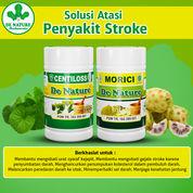 Obat Alami Stroke Ringan/Berat Resmi BPOM Tanpa Efek Samping Halal MUI (30188130) di Kota Padang