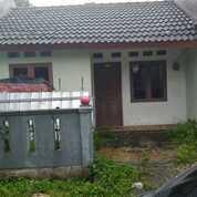 Rumah Murah Di Perumahan Brandweer Parung, Bogor (30230952) di Kota Bogor