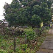 Tanah Milik Sendiri (30235128) di Kota Banjarbaru