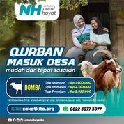 Harga Kambing Qurban | (30239765) di Kota Surabaya