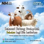 Qurban Pilihan Mantaaap (30250493) di Kab. Madiun