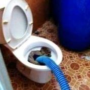 SEDOT WC TANGERANG AMANAH (30279273) di Kota Tangerang