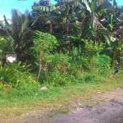 Tanah Keras Di Kawasan Surau Gadang, Kec. Nanggalo, Kota Padang (30314737) di Kota Padang