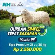 HARGA QURBAN 2021 (30323770) di Kota Surabaya