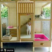 Kandang Kucing Anjing Ayam Burung Hewan Lainnya (30335682) di Kab. Malang