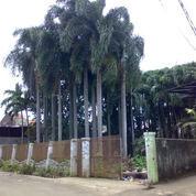 Tanah Di Legoso Ciputat Tangerang Selatan (3034817) di Kota Tangerang Selatan