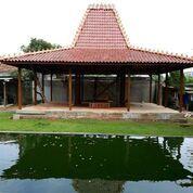 Pendopo Rumah Joglo Ukir Soko 20cm Bahan Kayu Jati Baru Ter Murah (30351324) di Kab. Kudus