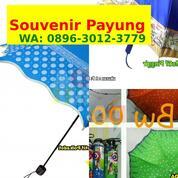 Harga Payung Lipat Mini (30366519) di Kota Prabumulih