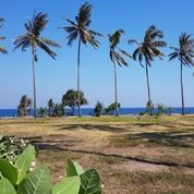 Tanah Pinggir Pantai Di Stangi Dekat Senggigi (30373621) di Kab. Lombok Barat