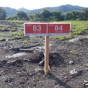 Kavlingan Tanah Dekat Dari Jalan Poros + Pesantren + Kuburan Cuma 37 Jt-An (30421025) di Kab. Sidenreng Rappang