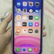 IPhone 11 64GB - Purple (Ex IBox) (30442565) di Kota Jakarta Barat