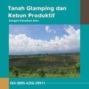 Malang Dreamland (30453795) di Kota Malang