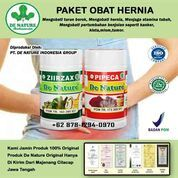 Inilah Obat Herbal Hernia Berkualitas Tinggi Herbal Alami De Nature Sudah Resmi BPOM Tanpa Operasi (30487244) di Kab. Lampung Barat