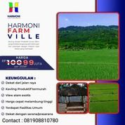 Tanah Kavling Sawah Bogor Timur (30499496) di Kota Bogor