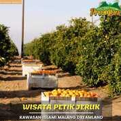 Investasi Tanah Kebun/Villa Murah,, Amal Jariah Pun Dapat Kawasan Islami Malang Dreamland (30520198) di Kab. Malang